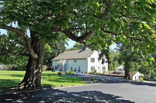 100 Pleasant Hill Road, New Windsor, NY 12553 (MLS #H6144468) :: Mark Boyland Real Estate Team
