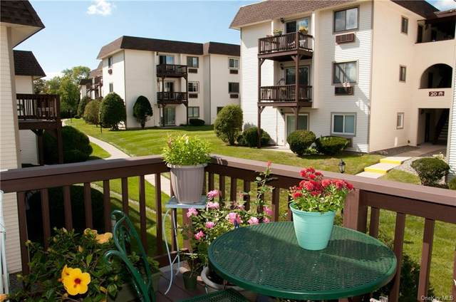 19 Vandidoort Drive 3E, Fishkill, NY 12524 (MLS #H6144476) :: Signature Premier Properties