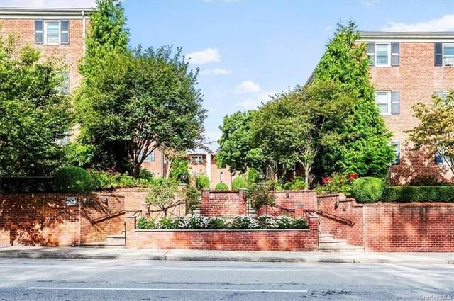 1829 Palmer Avenue 2D, Larchmont, NY 10538 (MLS #H6144520) :: Laurie Savino Realtor