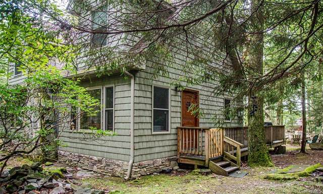20 Canal Road, Wurtsboro, NY 12790 (MLS #H6144716) :: Kendall Group Real Estate | Keller Williams