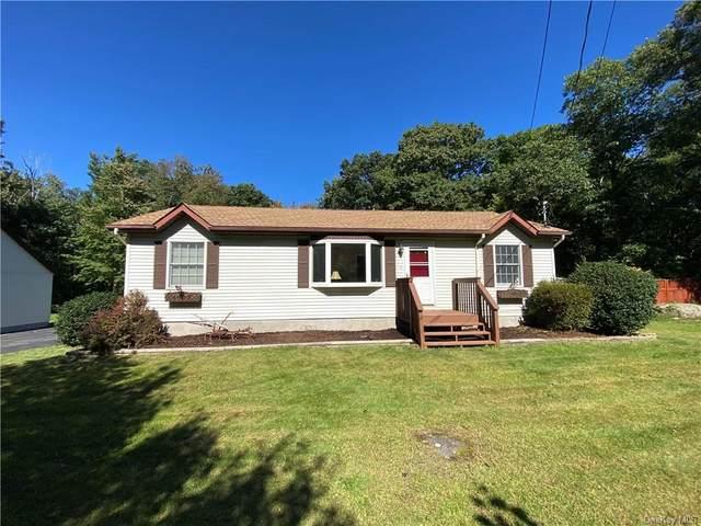 1254 Wurtsboro Mountain Road, Wurtsboro, NY 12790 (MLS #H6144737) :: Laurie Savino Realtor