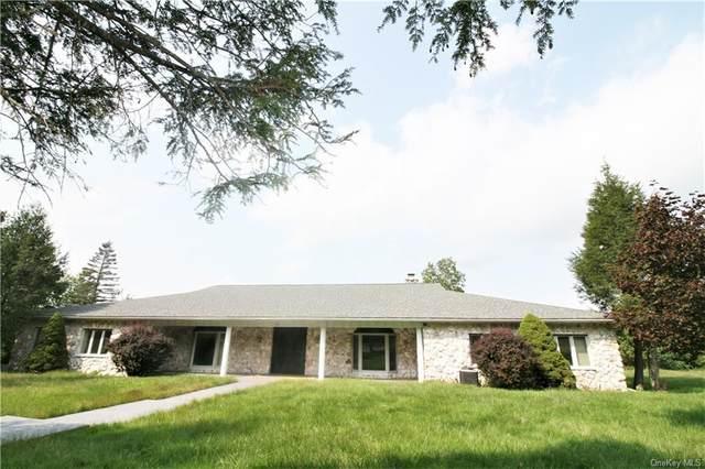 128 Wood Oak Drive, Narrowsburg, NY 12764 (MLS #H6144751) :: Cronin & Company Real Estate