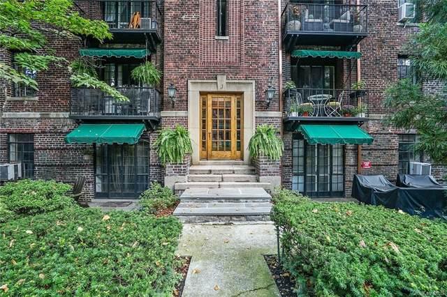 20 N Broadway #K250, White Plains, NY 10601 (MLS #H6144785) :: Signature Premier Properties