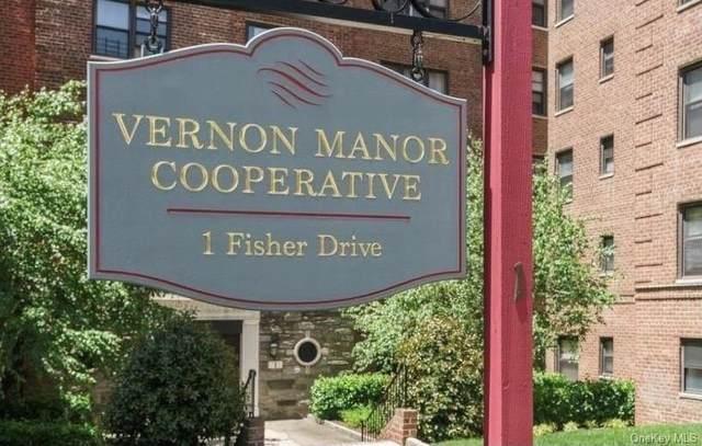 1 Fisher Drive #111, Mount Vernon, NY 10552 (MLS #H6144899) :: Carollo Real Estate