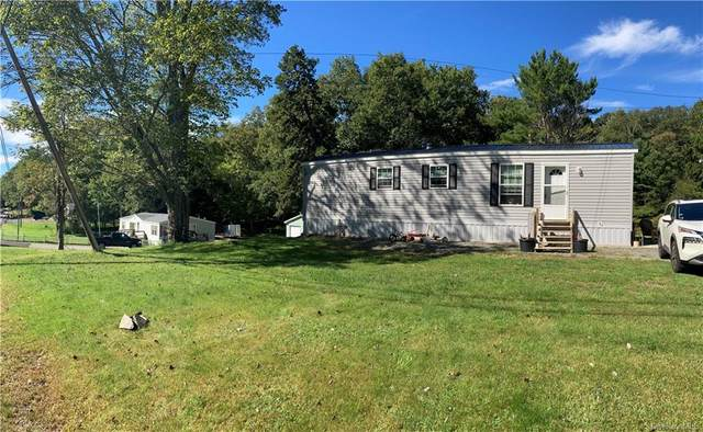 99 Beaver Brook Road, Narrowsburg, NY 12764 (MLS #H6145041) :: Goldstar Premier Properties