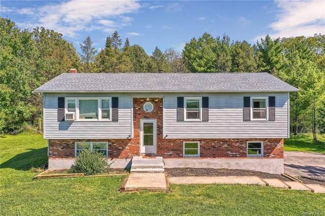 8 Spring Hill Court, Wappingers Falls, NY 12590 (MLS #H6145063) :: Corcoran Baer & McIntosh