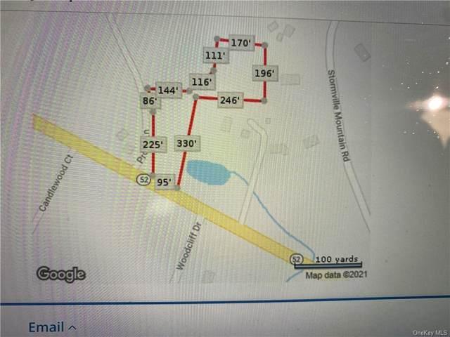 4 Prout Lane, Stormville, NY 12582 (MLS #H6145093) :: Goldstar Premier Properties