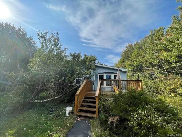 189 Muhlig Road, Liberty, NY 12754 (MLS #H6145137) :: Goldstar Premier Properties