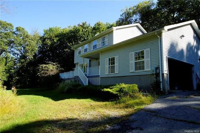 41 Kato Court, Chester, NY 10918 (MLS #H6145146) :: Goldstar Premier Properties