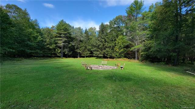 131 Perry Pond Road, Narrowsburg, NY 12764 (MLS #H6145157) :: Cronin & Company Real Estate