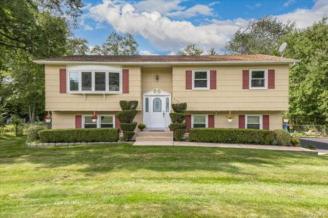 248 Betsy Ross Drive, Orangeburg, NY 10962 (MLS #H6145243) :: Corcoran Baer & McIntosh