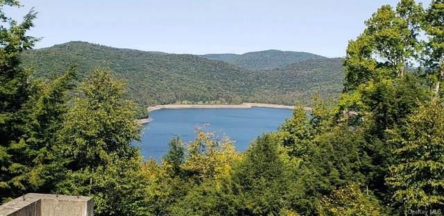 Crystal Lake Road, Deposit, NY 13754 (MLS #H6145250) :: Goldstar Premier Properties