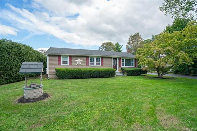 3376 Route 22, Dover Plains, NY 12522 (MLS #H6145260) :: Cronin & Company Real Estate