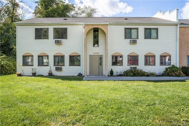 48 Scarborough Lane C, Wappingers Falls, NY 12590 (MLS #H6145343) :: The Home Team