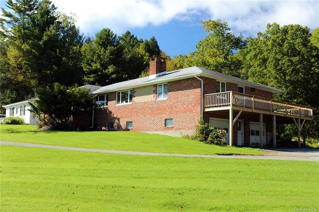9741 State Route 97, Callicoon, NY 12723 (MLS #H6145400) :: Goldstar Premier Properties