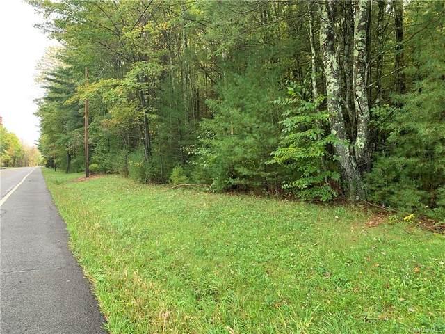 TBD Route 52, Wawarsing, NY 12489 (MLS #H6145408) :: Kendall Group Real Estate | Keller Williams