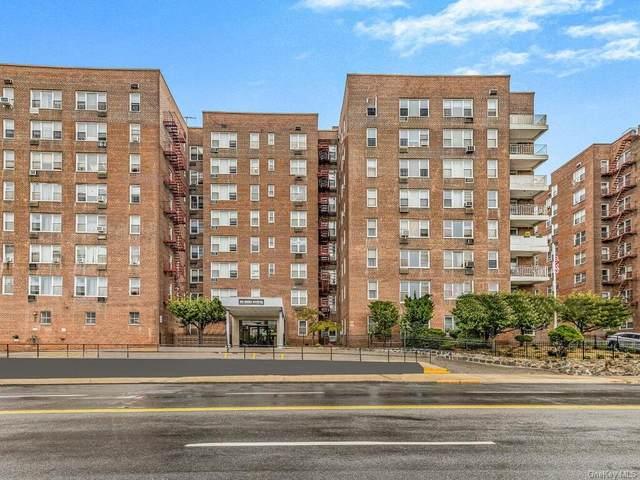355 Bronx River Road 1B, Yonkers, NY 10704 (MLS #H6145531) :: Goldstar Premier Properties