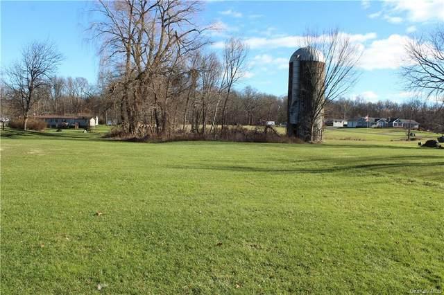 2190 State Route 32, Modena, NY 12548 (MLS #H6145624) :: Carollo Real Estate