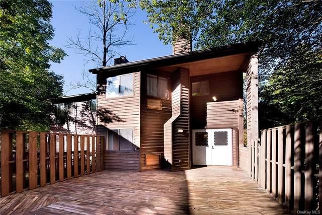 57 Edelweiss Drive, Woodridge, NY 12789 (MLS #H6145643) :: Carollo Real Estate