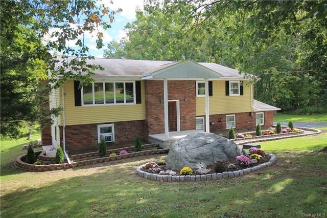 829 Albany Post Road, New Paltz, NY 12561 (MLS #H6145672) :: Cronin & Company Real Estate