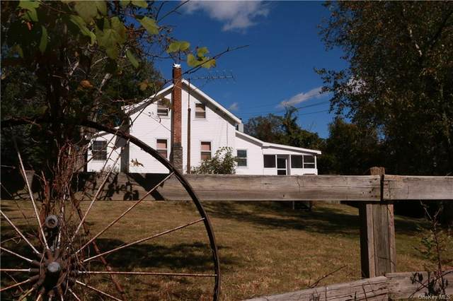 200 Yeagerville Road, Napanoch, NY 12458 (MLS #H6145684) :: Corcoran Baer & McIntosh