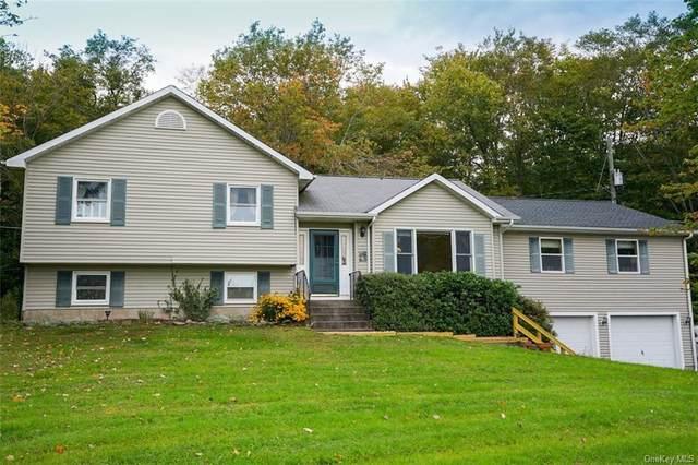253 Schumway Road, Neversink, NY 12765 (MLS #H6145686) :: Cronin & Company Real Estate