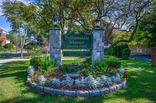 88 Robins Road #88, New Rochelle, NY 10801 (MLS #H6145826) :: Cronin & Company Real Estate