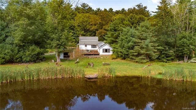 67 Crawford Road, Eldred, NY 12732 (MLS #H6145935) :: Carollo Real Estate