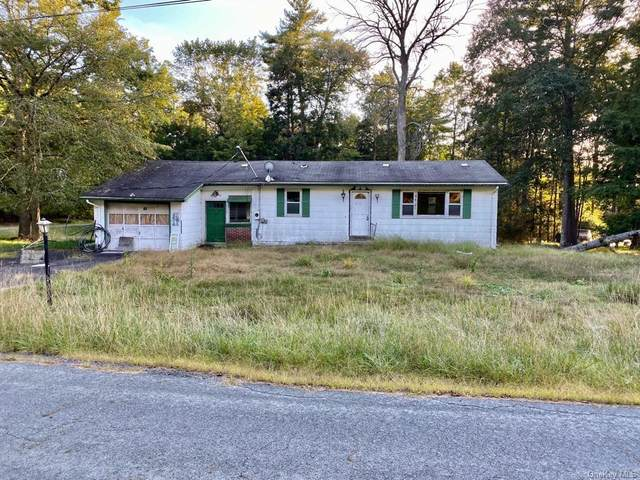 65 Park Lane, Yulan, NY 12792 (MLS #H6146127) :: Cronin & Company Real Estate