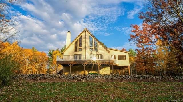 171 Grove School Road L, Catskill, NY 12414 (MLS #H6146311) :: Cronin & Company Real Estate