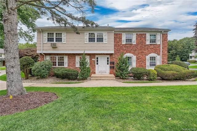 162 Doxbury Lane, Suffern, NY 10901 (MLS #H6146366) :: Goldstar Premier Properties