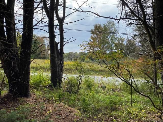 Royce Road, Kauneonga Lake, NY 12749 (MLS #H6146599) :: Cronin & Company Real Estate
