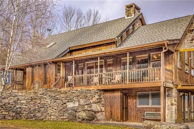 629 Big Hollow Road, Grahamsville, NY 12740 (MLS #H6146694) :: Cronin & Company Real Estate