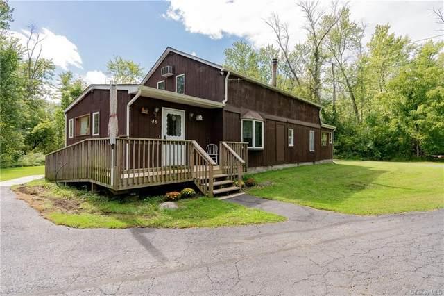 46 Givens Lane, Fishkill, NY 12524 (MLS #H6146791) :: Goldstar Premier Properties