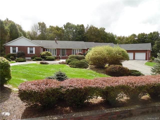 38 Dora Drive, Monticello, NY 12701 (MLS #H6146873) :: Mark Boyland Real Estate Team