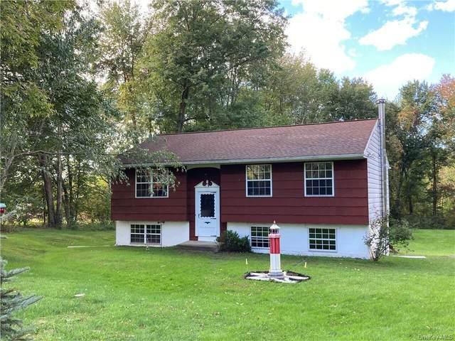 7 Michelle Drive, Gardiner, NY 12525 (MLS #H6146898) :: Cronin & Company Real Estate