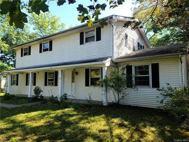 12 Bird Lane, Poughkeepsie, NY 12603 (MLS #H6146969) :: The Home Team
