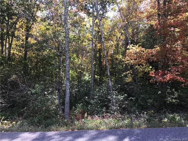 Dowe Road, Ellenville, NY 12428 (MLS #H6146985) :: Corcoran Baer & McIntosh