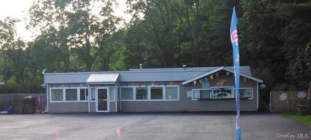1007 Us Route 209 Route, Cuddebackville, NY 12729 (MLS #H6147005) :: Corcoran Baer & McIntosh