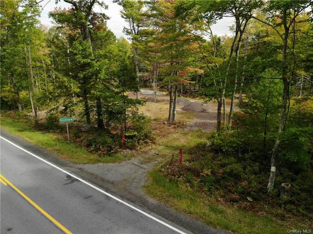 1131 Forestburgh Road, Glen Spey, NY 12737 (MLS #H6147031) :: Carollo Real Estate