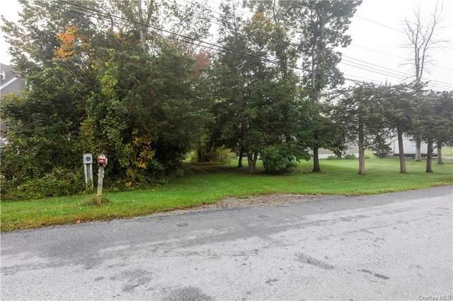 47 Cedar Lane, Wingdale, NY 12594 (MLS #H6147082) :: Cronin & Company Real Estate