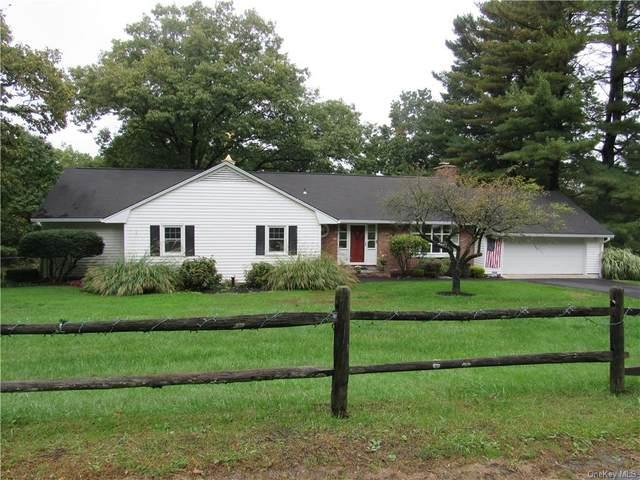 319 Greeves Road, New Hampton, NY 10958 (MLS #H6147089) :: Cronin & Company Real Estate