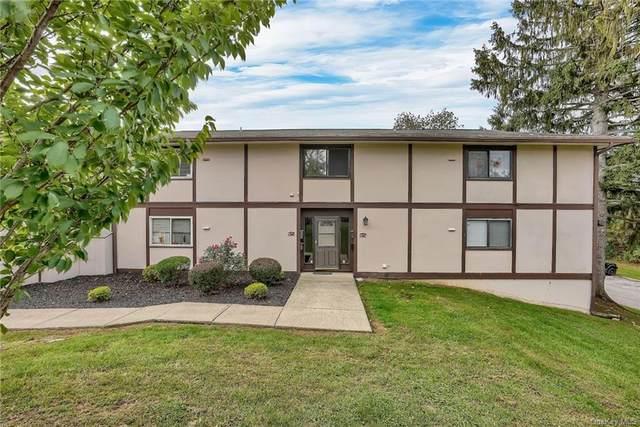 10 Millholland Drive K, Fishkill, NY 12524 (MLS #H6147198) :: Kendall Group Real Estate | Keller Williams
