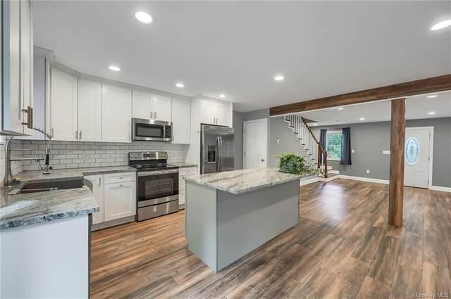 60 Warren Drive, Patterson, NY 12563 (MLS #H6147202) :: Cronin & Company Real Estate