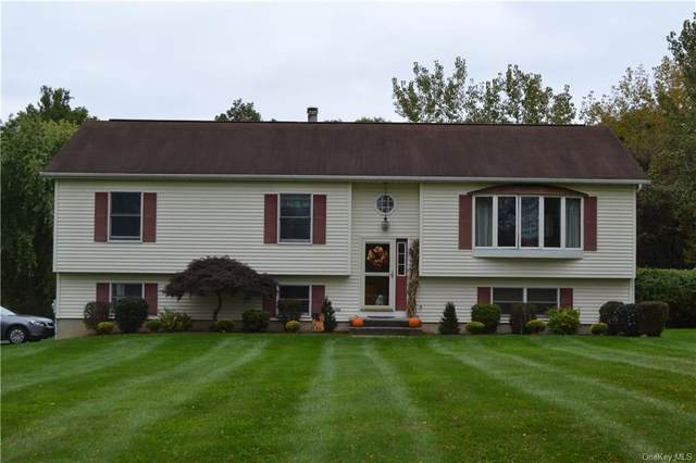 7 Briarwood Lane, Walden, NY 12586 (MLS #H6147225) :: Corcoran Baer & McIntosh