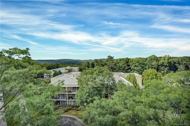 150 Overlook Avenue 7P, Peekskill, NY 10566 (MLS #H6147297) :: Cronin & Company Real Estate