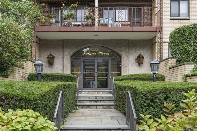 2221 Palmer Avenue 3O, New Rochelle, NY 10801 (MLS #H6147305) :: Cronin & Company Real Estate