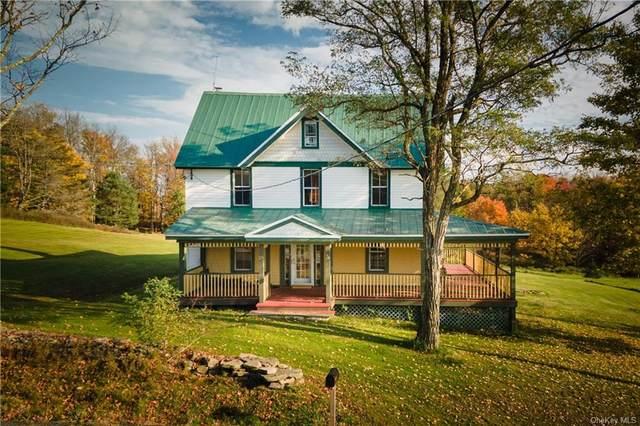 799 Shandelee Road, Livingston Manor, NY 12758 (MLS #H6147372) :: Barbara Carter Team