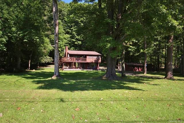 398 County Route 22, Middletown, NY 10940 (MLS #H6147441) :: Cronin & Company Real Estate