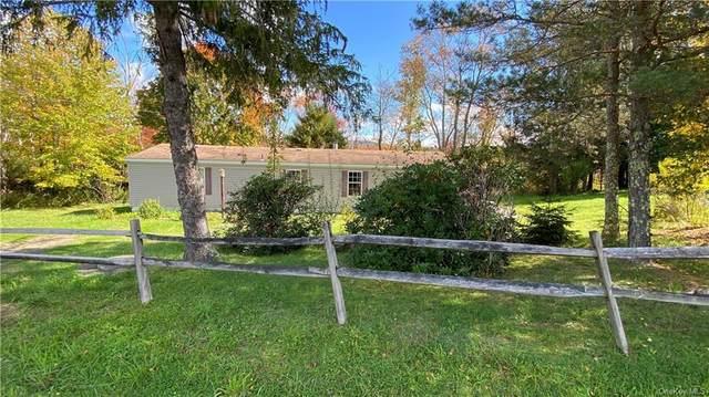 53 White Sulphur Road, White Sulphur Spring, NY 12787 (MLS #H6147547) :: Mark Boyland Real Estate Team